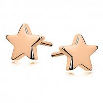 GOLD STAR EARINGS